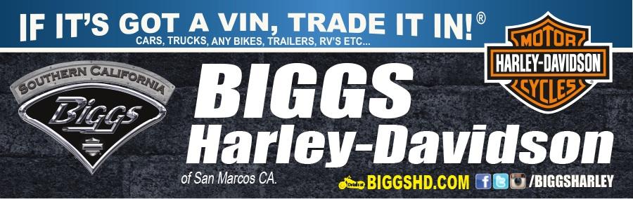 2009 Harley-Davidson XL883N - Sportster Iron 883